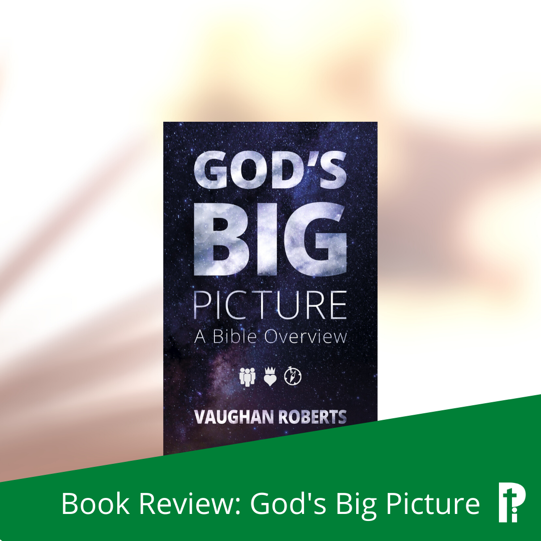 Book Review: God's Big Picture